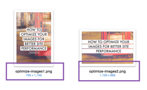 IMG-HOW TO OPT 2
